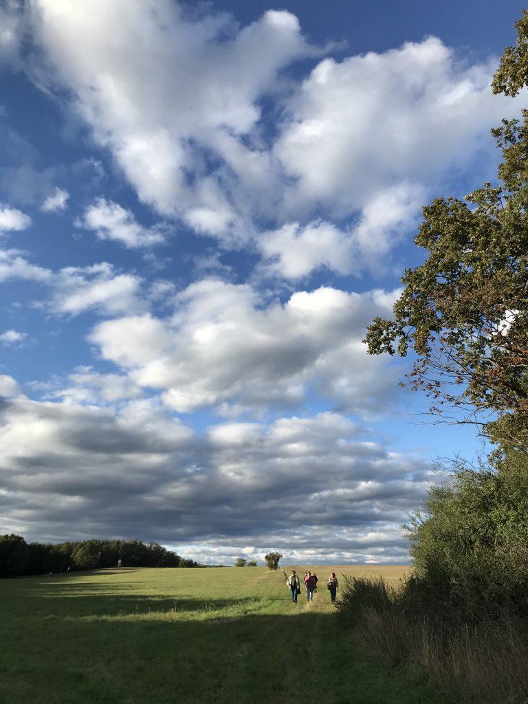 Landkultur Kultur mobil Wanderung mit Torsten Hammer Sept 2020