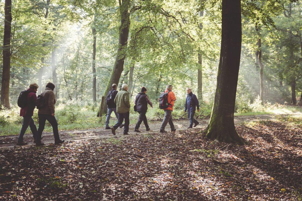 Naturpark Wandern Sonnenschein Menschen Foto von David Ludley