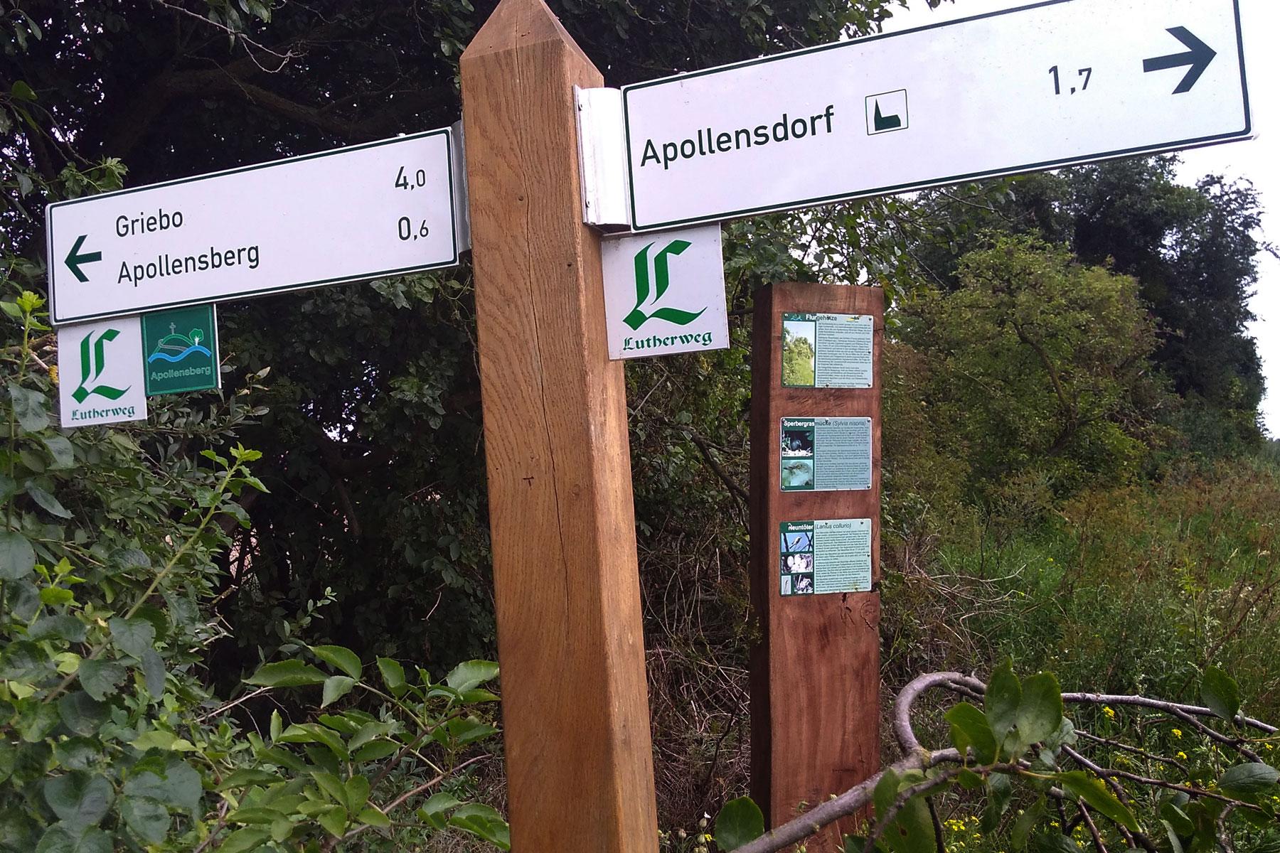Rundweg Zwischen Elbe und Fläming Wegweiser Apollensdorf