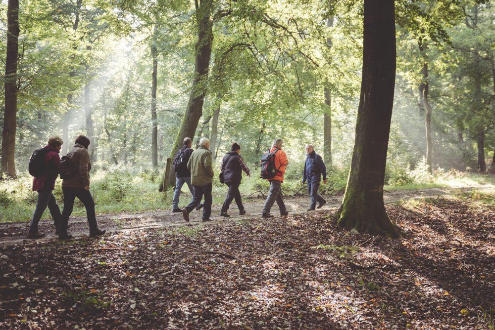 Wandern Menschen Naturpark Sonnenschein Foto von David Ludley